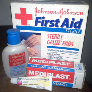 First Aid For Dog Bites And Scratches Pet Centrics