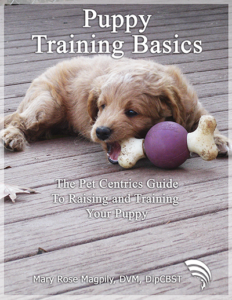Puppy Training Basics
