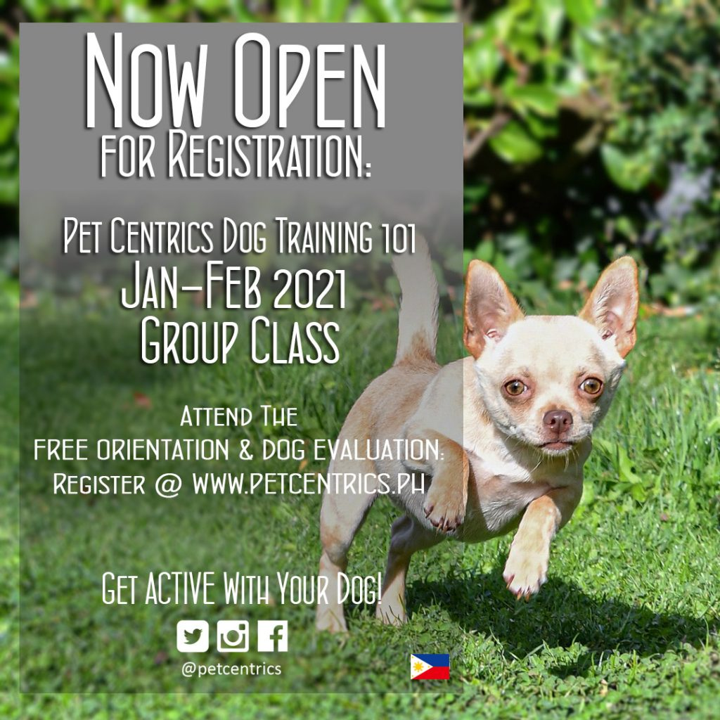 January 2021 Group Classes: NOW OPEN FOR REGISTRATION