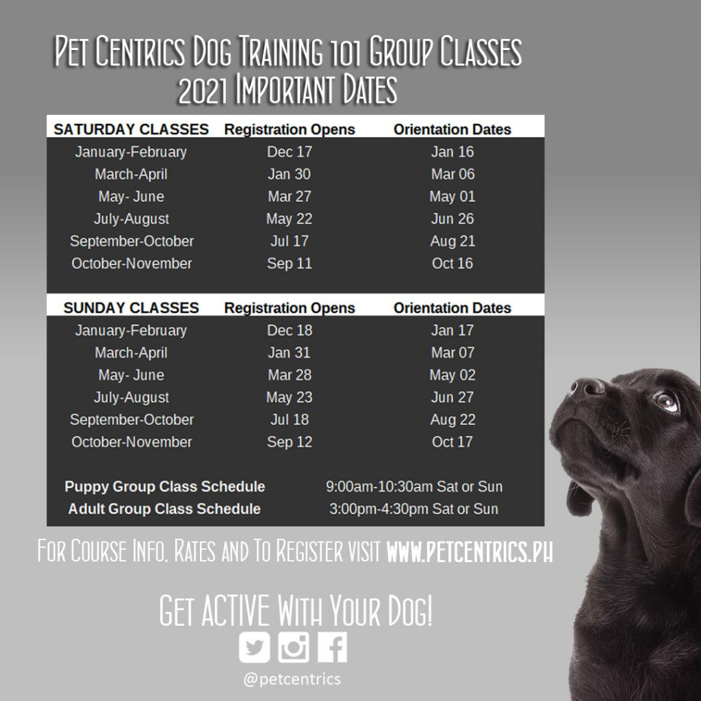 Pet Centrics Dog Training 101 Group Class Schedules 2021